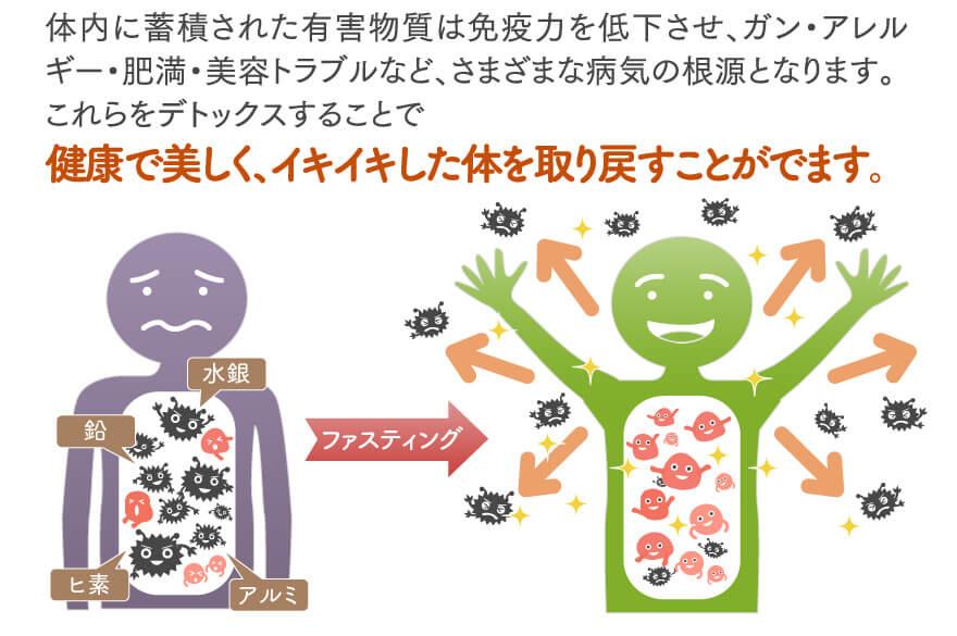 免疫力を高める食べ物   -